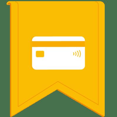 Google Premier Partner Shopping Advertising certificate logo