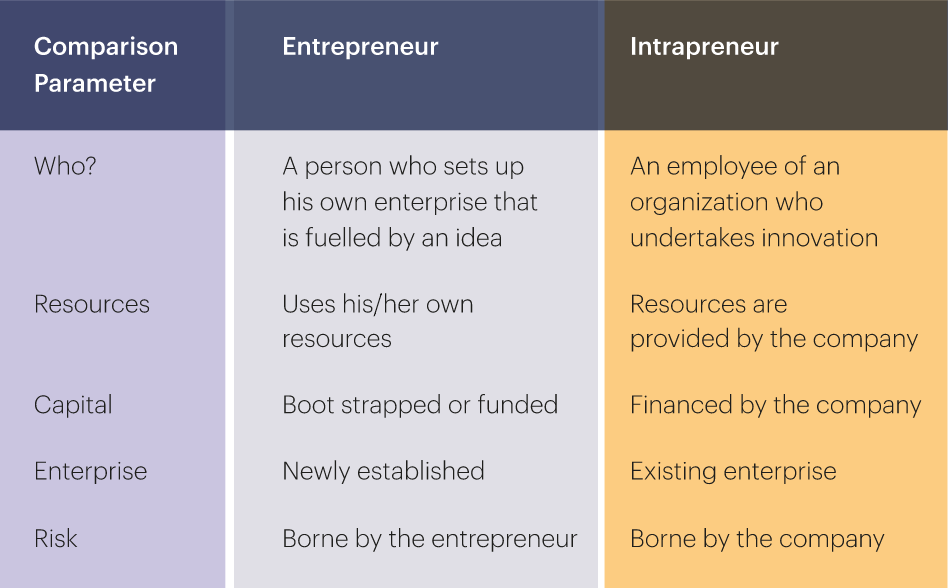 differences between an intrapreneur and an entrepreneur